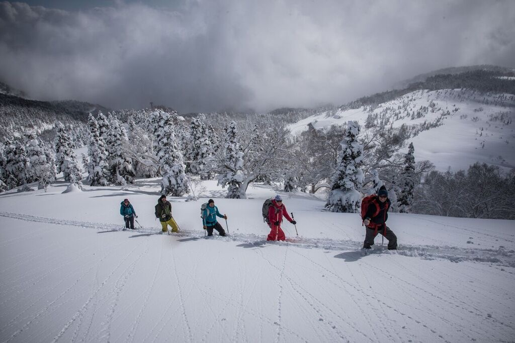 Ski touring in the deep skin track in Japan