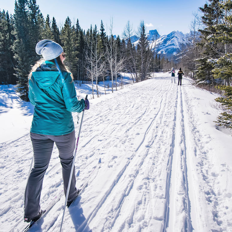 xc skiing 6 months pregnant