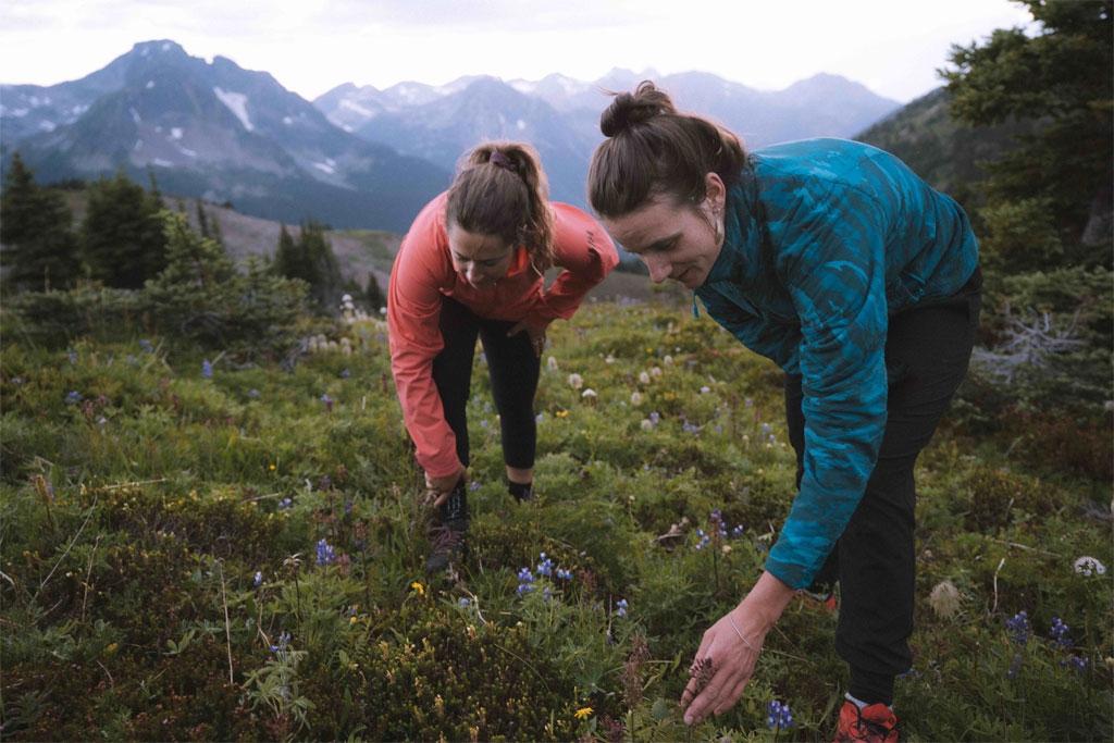 Leah Evans exploring alpine wildflowers at Whitecap Alpine Lodge