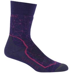 Icebreaker Hike+ Crew Socks - Medium Cushion - Womens-Aura / Cherub / Monsoon