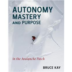 Autonomy, Mastery and Purpose in the Avalanche Patch