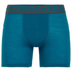 Icebreaker Anatomica Zone Boxers - Mens-Alpine / Monsoon