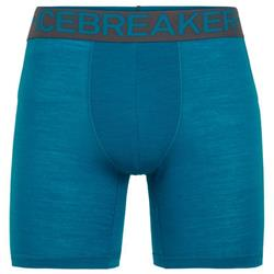 Icebreaker Anatomica Zone Long Boxers - Mens-Alpine / Monsoon