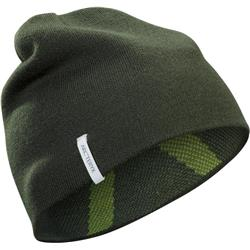 Arcteryx Crest Toque-Shorepine / Titanite